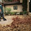 puhalnik listja